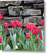 Stoned Tulips Metal Print