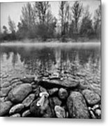 Stones And Trees Metal Print