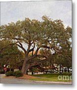 Stop And Rest Metal Print