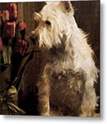 Stop And Smell The Flowers Metal Print by Edward Fielding