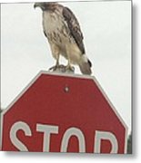 Stop Chemical Pollution Metal Print