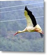 Stork In Flight Metal Print