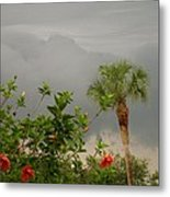 Storm Clouds And Flowers Metal Print
