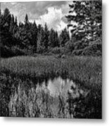 Storm Clouds Rolling In Over The Creek Metal Print