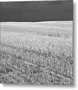 Storm On The Stubble Metal Print
