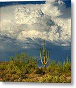 Stormy Desert Skies  Metal Print