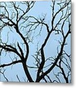 Stormy Trees Metal Print