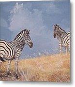 Stormy Zebra Metal Print
