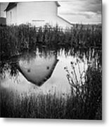 Straight Faced Metal Print