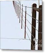 Straight Line Fence Metal Print