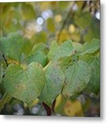 Stranded Hearts Of Autumn Metal Print
