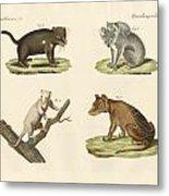 Strange Marsupials Metal Print