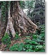 Strangler Fig Tree Roots On The Ancient Preah Khan Temple Metal Print