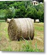Straw To Collect Metal Print