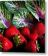 Strawberries And Kale. Metal Print