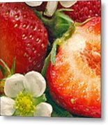 Strawberries And Vanilla Metal Print