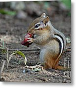Strawberry Thief Metal Print