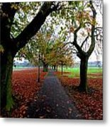Stray Beauty In Autumn No 2 Metal Print