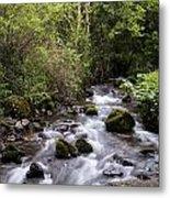 Stream At Glencar Metal Print