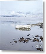 Stream Of Stillness Metal Print