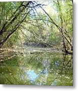 Stream Of Water Metal Print
