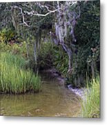 Stream To The Past Metal Print