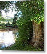 Strength Beside The Stream Metal Print
