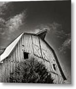 Strength Of Character Metal Print