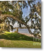 Stretch To The Water Metal Print