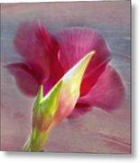 Striking Hibiscus Flower Metal Print