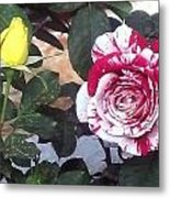 Striped Rose And Yellow Metal Print