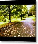 Stroll On An Autumn Lane Metal Print