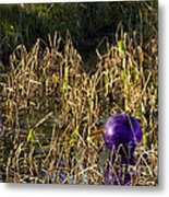 Stuck In The Middle With You Metal Print