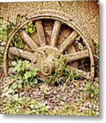 Stuck In The Mud Metal Print