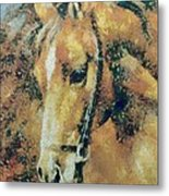 Study Of A Horse's Head Metal Print