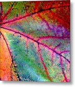 Study Of A Leaf Metal Print