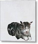 Study Of Cat Metal Print