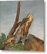 Study Of Rocks And Branches, George Augustus Wallis Metal Print