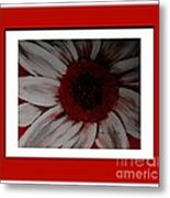 Stylized Daisy With Red Border Metal Print