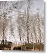 Subdued Reflection Metal Print