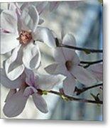 Sublime Magnolia Metal Print
