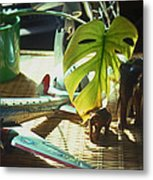 Suburban Safari Original Metal Print