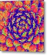 Succulent 7 Metal Print