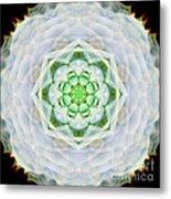 Succulent Mandala Metal Print