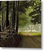 Sugarbush Road Metal Print by Michael Swanson