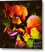 Sultry Nights - Flower Photography Metal Print