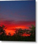 Sumac Sunset Metal Print
