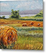 Summer Bales Metal Print