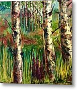 Summer Birch Metal Print