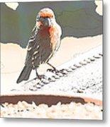 Summer Bird Metal Print